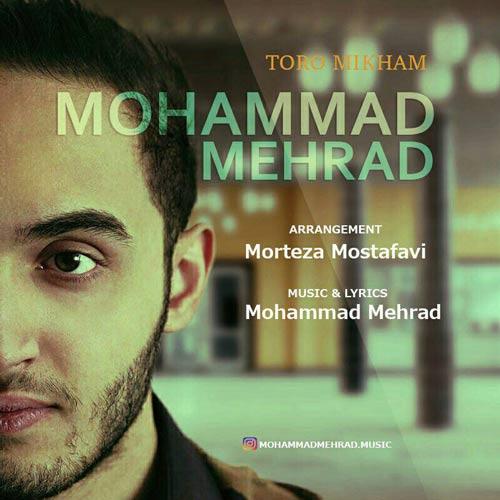 دانلود آهنگ محمد مهراد بنام تورو میخوام