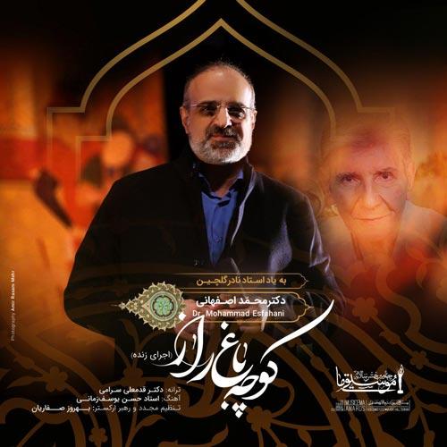 دانلود آهنگ اجرای زنده آهنگ محمد اصفهانی بنام کوچه باغ راز