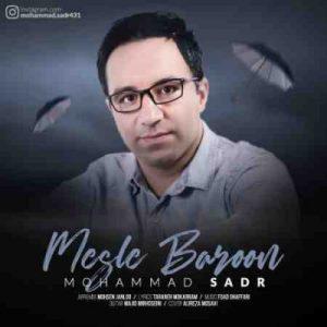 دانلود آهنگ جدید محمد صدر به نام مثل بارون