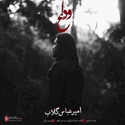 دانلود آهنگ جدید امیر عباس گلاب به نام وداع