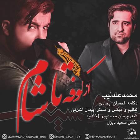 دانلود آهنگ جدید محمد عندلیب به نام از کوفه تا شام
