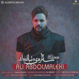 دانلود آهنگ جدید ستاره دنباله دار از علی عبدالمالکی